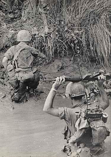 Swamp Hunt