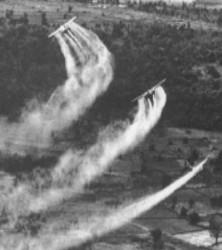 spraying agent orange toxins