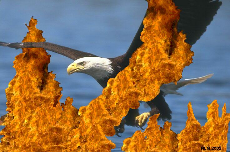 Eagle Through The Flames